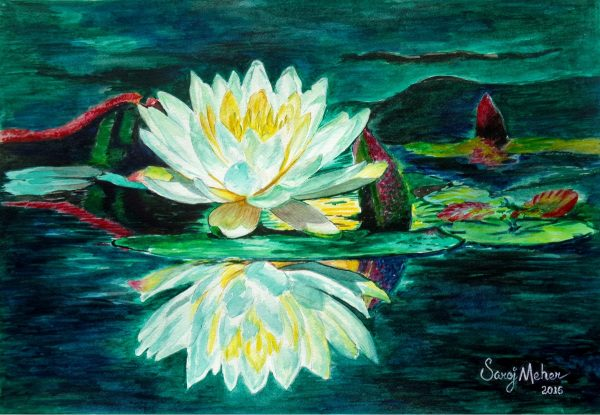 Water Lily - Original Watercolour Painting - 12 X 16 inch - by Saroj Meher